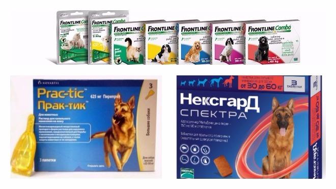 таблетки от клещей для собак