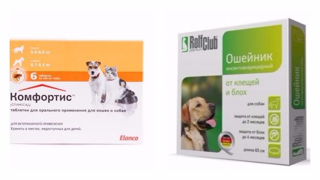 лечение клещей у собак