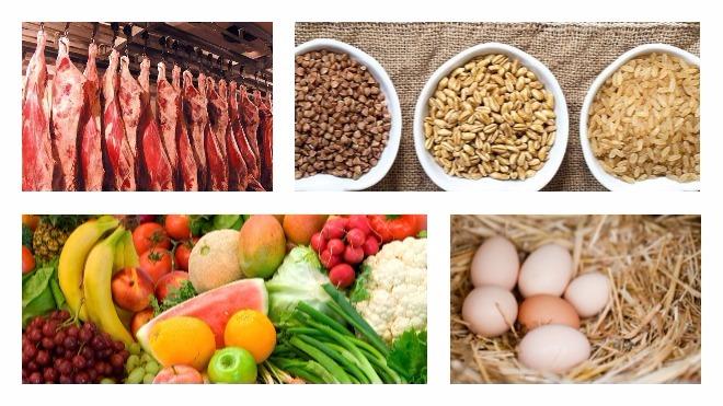 полезные продукты для питания овчарки