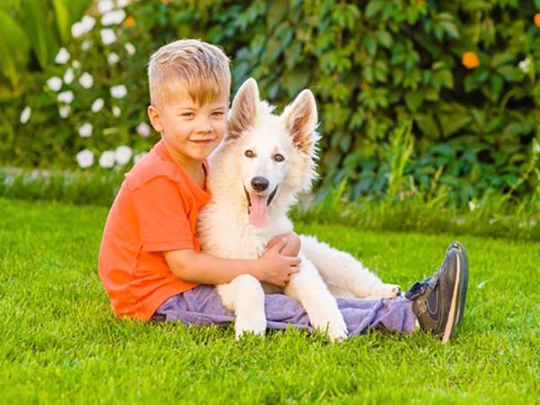 Как выбрать породу собак для детей