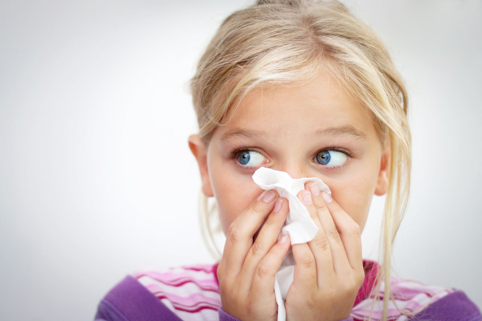 Аллергия у ребенка на йоркширского терьера